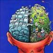 Beyin Hakkında 24 Şaşırtıcı Gerçek - 10