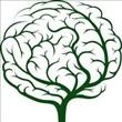 Beyin Hakkında 24 Şaşırtıcı Gerçek - 3