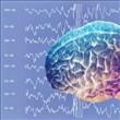 Beyin Hakkında 24 Şaşırtıcı Gerçek - 1