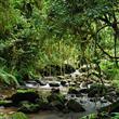 Mutlaka Gidip Görmeniz Gereken 20 Doğa Harikası - 9