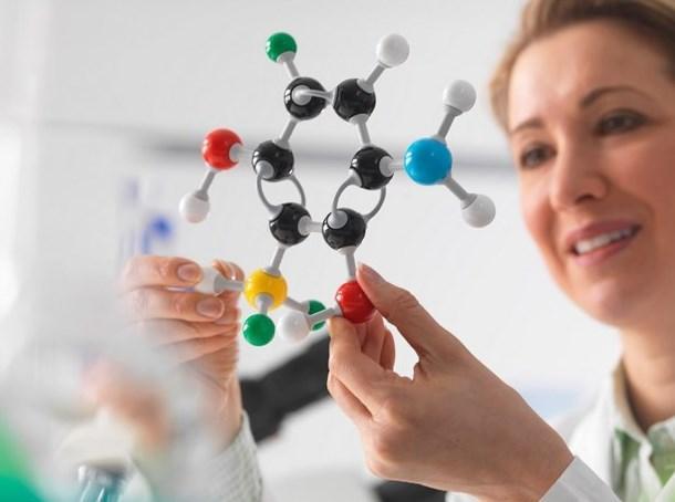Z :  Bilimsel açıdan başarılı, okumayı seven, akademik anlamda başarılı kişilik ifadesidir.