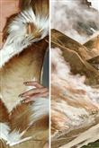 Ünlü Tasarımcılardan Doğanın Modası - 23