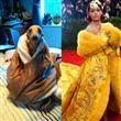 Rihanna'nın Elbisesine Benzeyen Komik Cisimler - 11