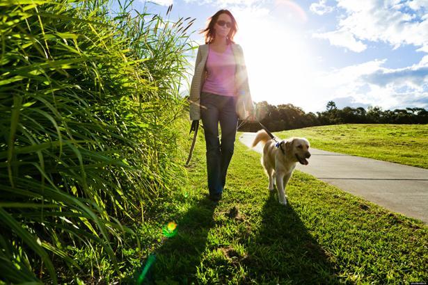 Dışarı çıkın. Sabah kalkınca yapacağınız ilk iş dışarı çıkmak olsun. Amerikalı bilim adamları doğal ışığın beyni harekete geçirdiğini ve seratonin salgılamasına yardımcı olduğunu söylüyor. Bu da mutluluğunuzu artıracaktır.