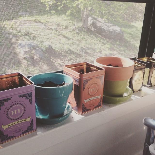 Çay tenekeleri ve renkli saksılar  Renkli çay tenekeleri ile uyumlu bir kaç porselen saksı ile mutfak pencerenizin önü şenlenebilir.