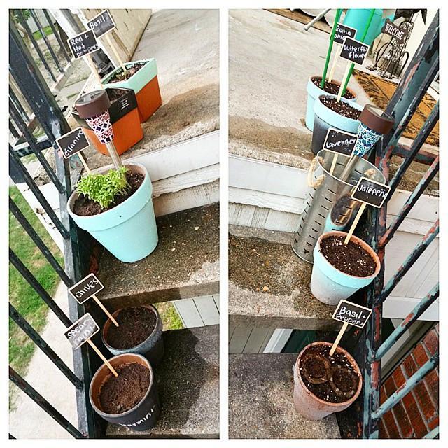 Eve çıkan merdivenlerinizi renklendirin.  Apartmandaki komşularınızın da eminim çok hoşuna gidecektir. Merdivenlerinizi minik güzel saksılarla süsleyin. Mis kokulu çiçekler ve otlar ektiğiniz saksılarınızda hangi bitkiler olduğunu üzerine yazarsanız meraklılarını da özendirebilirsiniz.