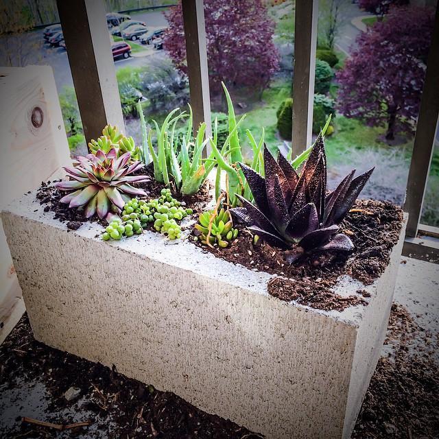 Mermer blok değerlenir mi?  Giriş katında oturuyorsanız evinizin önünde eski mermer bloklar vardır. Sevimsiz taş yığınlarını renklendirip evinizin girişini renklendirebilirsiniz.
