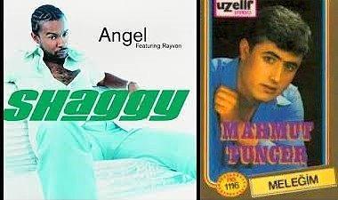 Shaggy Tuncer