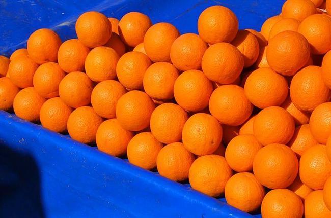 Washington Portakalı  Bu portakal ilk olarak İspanyollar tarafından Brezilya'ya götürülmüş. 1870'de Brezilya'dan bir düzine kadar portakal fidanı beyaz saraya hediye olarak gönderildiği zaman Washington yetkilileri bu fidanları seralara ektirmişler. Daha sonra iklim uygun olmadığı için bu fidanlar Florida ve Kaliforniya'ya gönderilmiş ve üretime geçilmiş. Washington'dan geldiği için bu isimle anılan portakal Kaliforniya'da iyi tutmuş ve bu portakalın ismi tüm dünyaya bu şekilde yayılmış.