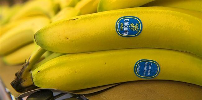 Çikita(Chiquita) Muz  Chiquita, ya da eski ismiyle United Fruit Company, Latin Amerika'da her taşın altından çıkan bir şirket. Aynı ülkemizde kağıt mendile Selpak mendil dediğimiz gibi şirketin ismi ile bütünleşmiş bir meyve haline geldi.