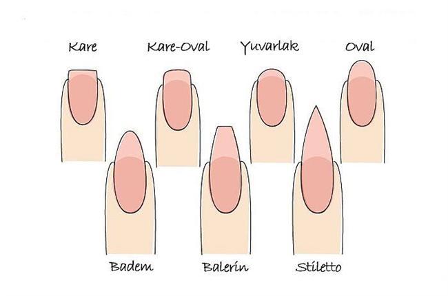 Tırnak Şekilleri  Artık küt ve yuvarlak olmak üzere iki farklı tırnak şekli yok. Birçok farklı şekil ve moda var.