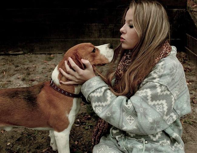 Köpeği olan kadınlar ayakları üstünde durmayı bilirler. Asla ama asla kimseye muhtaç değildirler.
