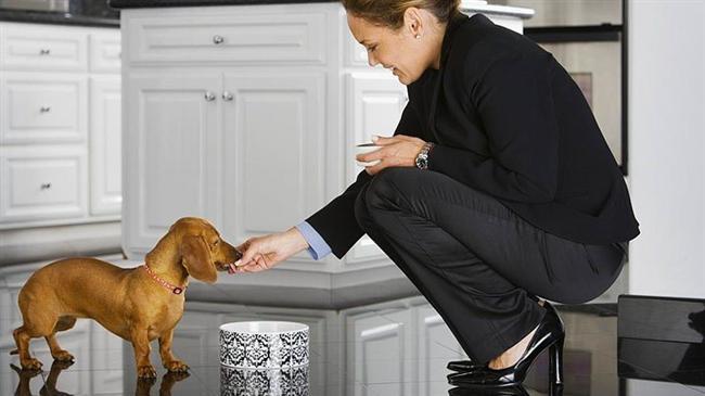 Köpeği olan kadınlar sorumluluk sahibidir. Planlı programlı insanlardır. Bu da onları başarılı kılan etkenlerden biridir.