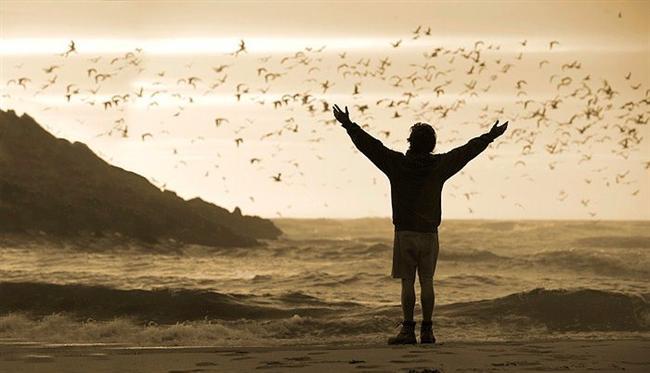 1. Özgürlük Yolu (2007) | IMDb 8.1  Christopher McCandless üniversiteden mezun olduktan hemen sonra iş, aile ve sorumluluk gibi ağırlıkları geride bırakıyor. Bütün parasını yakıyor ve Alaska'da doğa ile birebir yaşamak için yola koyuluyor. McCandless, uzun yolculuğu boyunca bin bir tür macera ve bin bir tür insan ile karşılaşıyor. Grand Canyon'da river rafting yapıyor, doğayı kendine ev ediniyor, orta yaşlı bir hippi çift ve özellikle yaşlı yanlız bir adamla unutulmaz birer ilişki kuruyor.