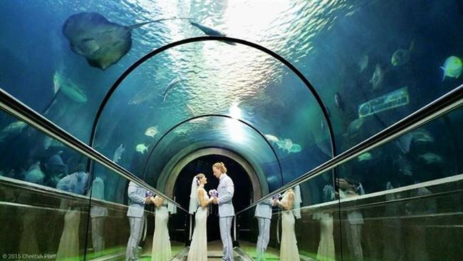 Bu Çift 38 Yerde Evlendi! - 5