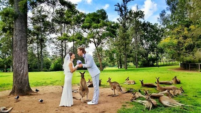 Bu Çift 38 Yerde Evlendi! - 15