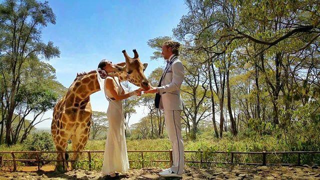 Bu Çift 38 Yerde Evlendi! - 16