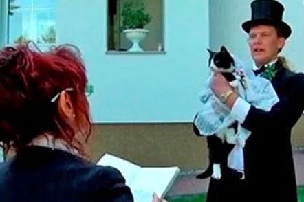 Kedisiyle evlenen adam