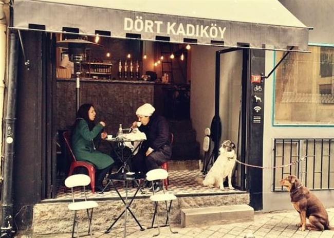 Dört  Karaköy'ün Sapiens'i varsa Kadıköy'ün de Dört'ü var efendim. Ahşap masalı, küçük ama gururlu bu mekanda kahvenizin yanına brownie istemeyi unutmayın.