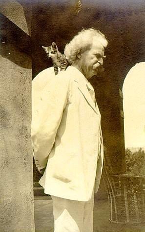 """Mark Twain  """"Tanrının tüm yarattıkları arasında sadece kediler köleleştirilememiştir. Mümkün olsaydı insan kediyle çiftleştirilebilseydi bu insan türünün gelişmesine kedi türünün ise gerilemesine neden olurdu."""""""