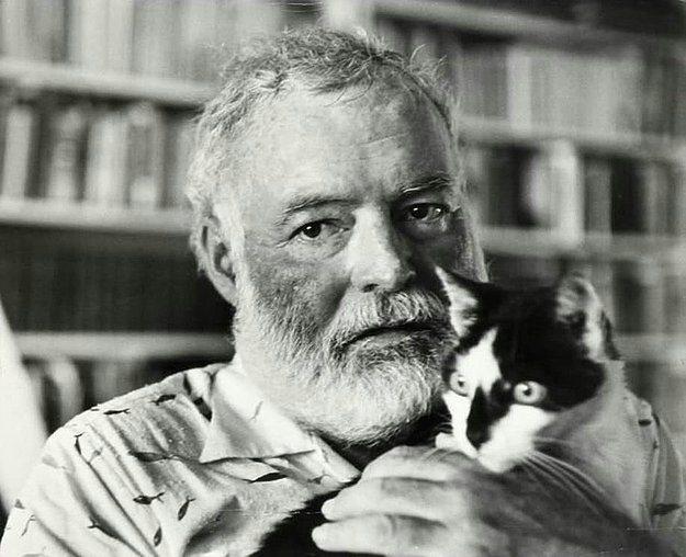 """Ernest Hemingway  """"Bir kedi tamamıyla duygusal dürüstlüğe sahiptir. İnsalar ise, nedeni değişmekle birlikte, duygularını saklayabilmektedir, kediler saklayamaz."""""""