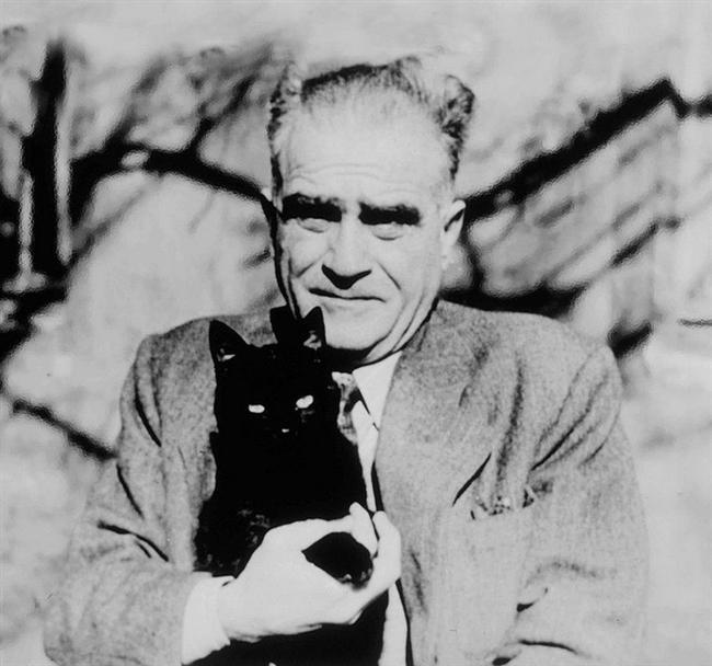 Ahmet Hamdi Tanpınar  ...bir kedi kadar kanaatkar hayat...  - Huzur