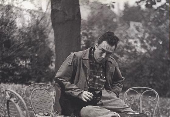 """Albert Camus  """"Veba zamanlarında kedilere tükürmek yasaktıır!""""  - Veba"""