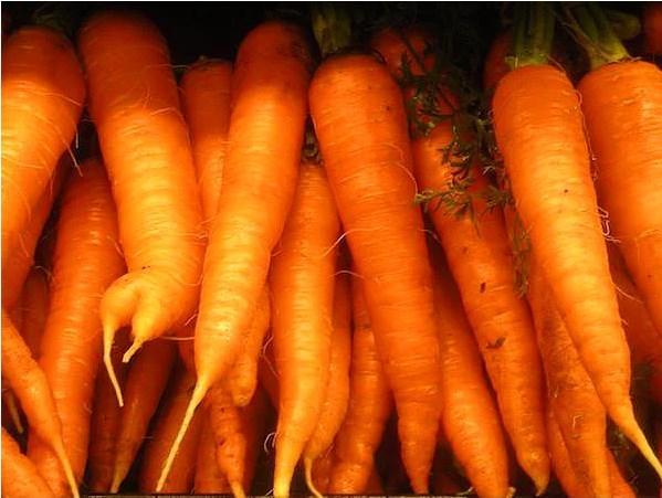 Turuncu besinler  Havuç, balkabağı ve tatlı patates gibi yiyeceklerin fazlasıyla içerdiği beta karoten, vücutta A vitaminine dönüştürülür.