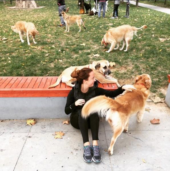 Ayşe Özyılmazel  Önce koştuk sonra oynadık, haftaya böyle başladık @ercancimenay 🏃🏼💪🏼👊🏼🐶 hadi inşallah güzel bir hafta olsun herkese 💞🌸🌺 #run #koşanbilir #koşayşekoş #koşalım #morningrun #runhappy #befit #eatclean #dogs #pets #istanbul #bebek