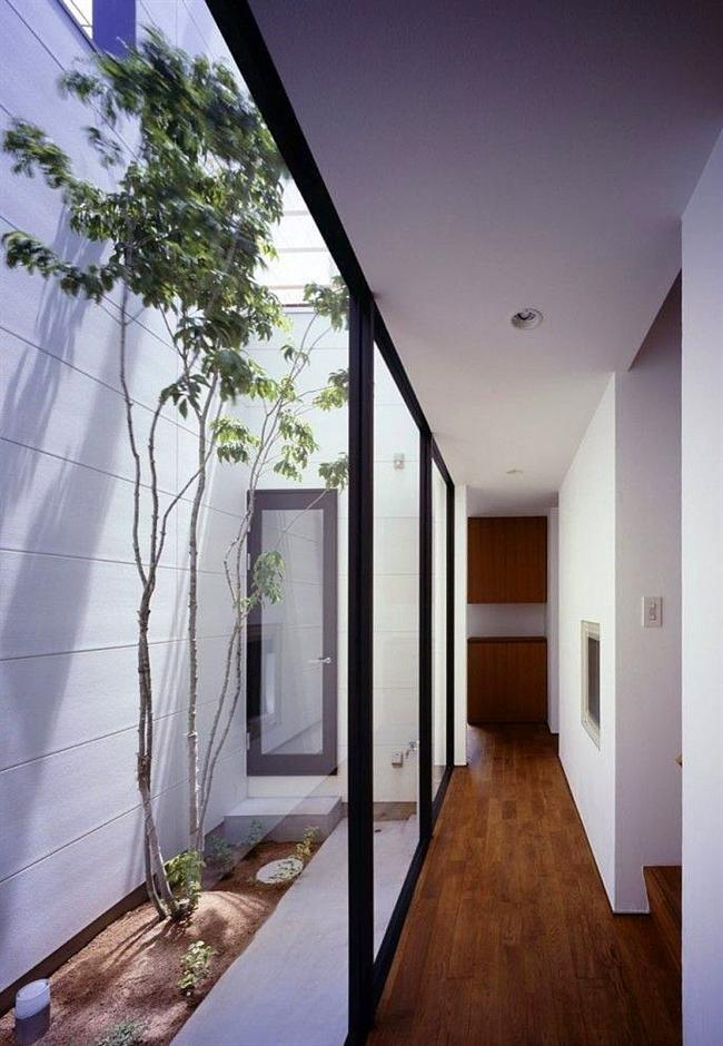 Ev İçi Bahçe Dekorasyon Örnekleri - 19