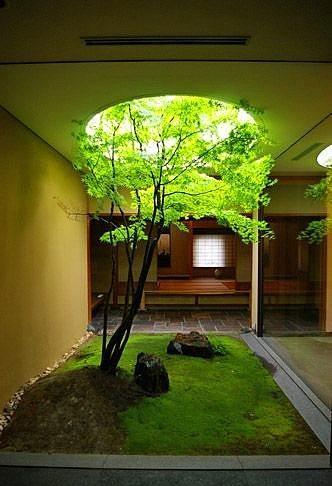 Ev İçi Bahçe Dekorasyon Örnekleri - 17