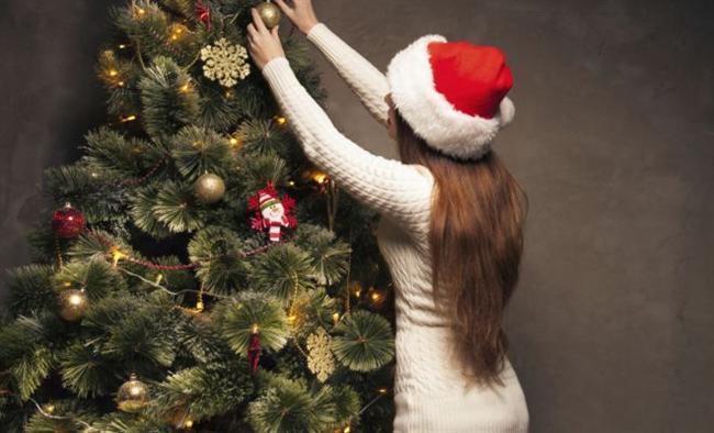 Ev ya da çam ağacı süslemek gibi bir sorumluluk almazsınız.