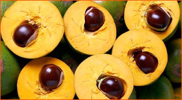 Lucuma  Peruluların yüzlerce yıldır tükettikleri bu yumurta şeklindeki tropik meyve tam bir sağlık kaynağı. Lucuma, B3 vitamini, demir ve lif bakımından çok zengin. Aynı zamanda lucuma, tıpkı bildiğimiz havuç gibi çok iyi bir beta-karoten kaynağı. Göz sağlığımız için gerekli olan beta-karoten, hücre yenilenmesine katkıda bulunarak kansere karşı bir kalkan görevi görüyor. Lucuma'nın bir diğer özelliği de tıpkı şekere alternatif stevia gibi doğal tatlandırıcı olması. Lucumayı smoothie veya tatlı tariflerine toz olarak katabilir ve böylece kan şekerinizi yükseltmeden tatlı ihtiyacınızı giderebilirsiniz. Lucuma, yaş meyve veya paketlerde toz haline satılıyor. Ülkemizde henüz satışı çok yaygın değil.