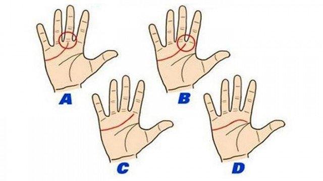B: Eğer kalp çizginiz orta ve işaret parmaklarınızın arasından başlıyorsa, siz düşünceli, anlayışlı ve nazik birisiniz.