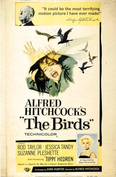 The Birds / Kuşlar (1963)  Melanie Daniels, San Francisco'da kuş satan bir dükkanda Mitch Brenner'la tanışır. Mitch, kız kardeşinin doğumgünü için ona bir çift muhabbet kuşu almayı istemektedir, ancak mağazada muhabbet kuşu yoktur. Melanie ve Mitch, bu sırada daha önce tanışmış olabilecekleri ihtimaliyle karşılaşırlar. Bu durum bir aşk üçgenine dönüşür ve doğumgünü esnasında ortaya çıkan bir kuş saldırısıyla işler iyice karışır.  Yönetmen Alfred Hitchcock Kuzey Kalifoniya'da tatil yaparken gazetede gördüğü bir haberden etkilenir ve olay ileDaphne du Maurier'in kısa bir öyküsünü birleştirir. The Birds, kuşlardan yarattığı gerilimle takdiri hak eden bir yapım.