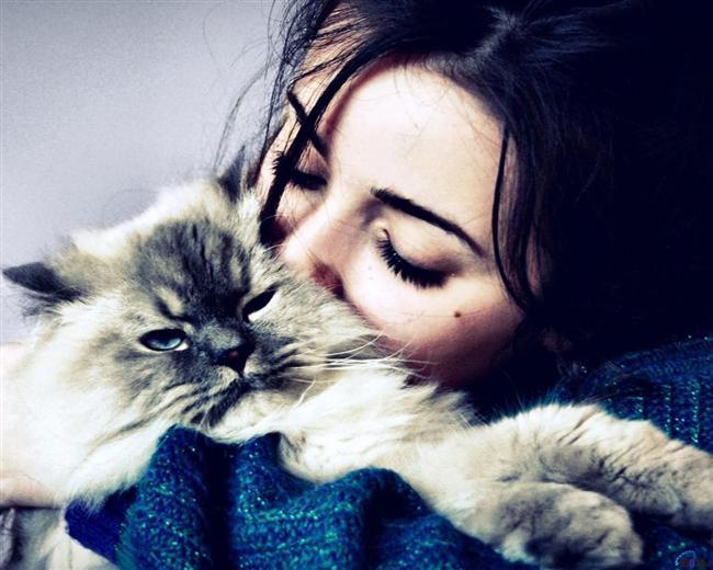 Soğuk havalarda kedinize, köpeğinize sarılmak, bir insana sarılmaktan çok daha güzeldir.