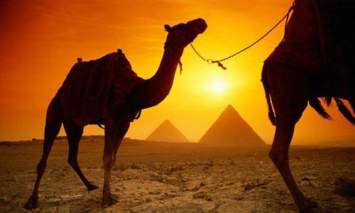 MISIR   Tutankamon'u ve Firavunların altın çağlarına şahitlik edeceğiniz Mısır'ın tarihi aklınızı başınızdan alacak. Çölün ortasında kurulan bu medeniyete hayran kalacak, değişik yemek kültürlerini deneme fırsatı yakalayacaksınız. Hava sıcaklıkları Mısır'da 20 derece civarında. Yazın oldukça sıcak olan Mısır'ı ziyaret etmenin en güzel zamanı olan kış mevsiminde hiyeroglif ve piramitleri gördükten sonra pişmanlık duymayacaksınız.