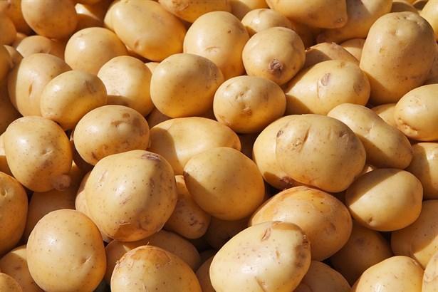 Patates   C vitamini içeren patatesin en önemli artısı potasyum kaynağı olmasıdır. Potasyum, kalp sağlığı ve hücreler için gerekli olan hücrelerde ki sıvı ve mineral dengesini sağlar. Ödem problemi olmaması ve bu özel günü enerjik geçirmemiz için 1 orta boy patatesi fırında veya haşlanmış olarak 1 dilim ekmek yerine yiyebileceğiniz gibi sebze çorbanızın içine de ilave edebilirsiniz.