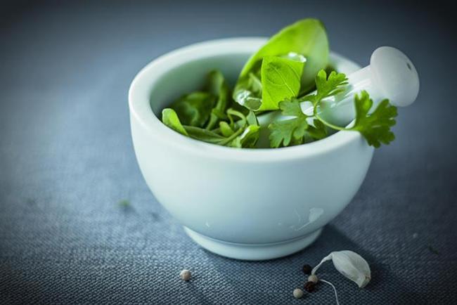 Anti bakteriyel özelliğe sahip  Klorofil içeren maydanozantibakteriyel özelliğe de sahip. Bu sayede ağız kokusunun önlenmesinde yardımcı besindir.