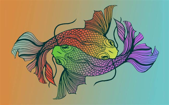 Balık Burcuna Özel Diyet - 2
