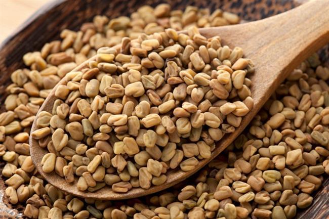 Fenugreek  Yemeklere tat vermek için kullanılan bu bitki çok amaçlı kullanılabilir. Fenugreek tohumu demir, potasyum, kalsiyum, lif ve kolin zenginidir. Fenugreek yaprakları salatada kullanılabileceği gibi unundan salamura yapılabilir.