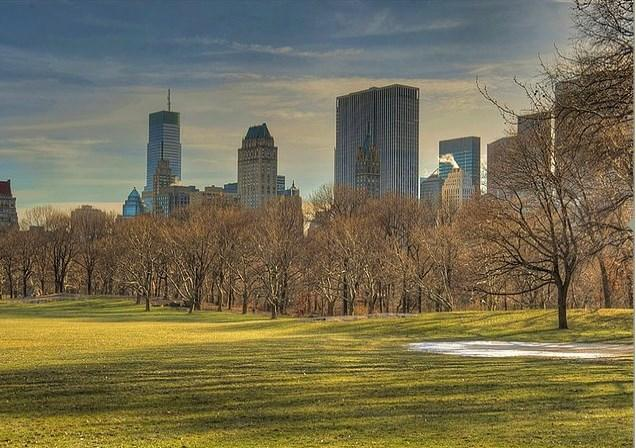 Central Park çoktan piknik alanı olmuştur.