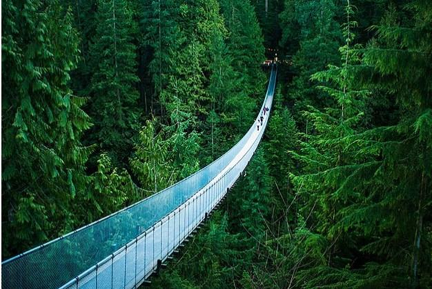 Kanada'daki Capilano Asma Köprüsü'nü yüzlerce insanla paylaşınca bir anlamı kalmayıverir.