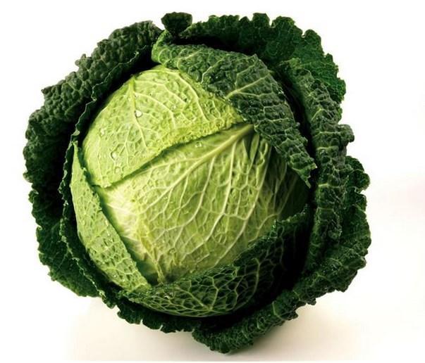 Akdeniz bölgesinde keşfedilen lahanalar genellikle yuvarlak ve çok açık yeşildir.  Sert, kaba, parlak ve düz yaprakları bir sap üzerinde kat kat ve iç içe yetişir. Baharatlı tadı olan beyaz lahanalar, lahanalar içinde en fazla kullanılan cinstir.  Karakteristik olarak lahanalar uzun süre depolanıp saklanabilirler. Lahanalar bol miktarda C vitamini içerir. Ayrıca kalsiyum ve demir bakımından da zengindir.