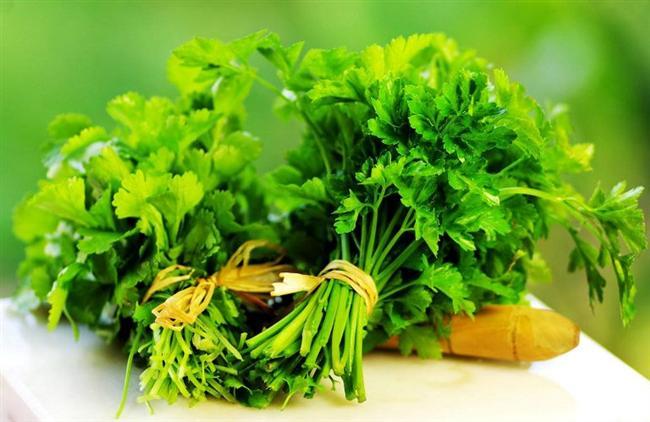 Maydanoz: Maydanoz, kalp sağlığı için çiğ olarak tüketilmesi gereken yeşil sebzelerin başında gelir. Özellikle salatalarda ya da üzerine bir miktar zeytinyağı gezdirilerek tüketilmesi; şeker, tansiyon gibi pek çok hastalığa olumlu etki ederek kalp sağlığının korunmasına ve vücuttaki fazla suyun atılmasına yardımcı olmaktadır.