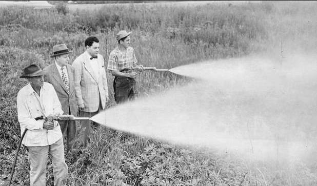 DDT: DDT'ye sıtma gibi böceklerin taşıdığı hastalıklara karşı sihirli bir çare olarak bakılıyordu. 1873'de keşfedilen DDT, 1939'a kadar yaygın olarak kullanılmamıştı. Bu tarihte İsviçreli kimyacı Paul Hermann Muller İkinci Dünya Savaşı sırasında DDT'nin etkili bir böcek ilacı olduğunu keşfetti ve 1948'de bununla Nobel Ödülü kazandı. Savaştan sonra ilacın kullanımı patladı: 1942 ile 1972 arasında ABD'de milyonlarca kilogram DDT kullanıldı. Ancak DDT çılgınlığı sırasında her yıl bu kadar büyük miktarda böcek ilacı kullanımının çevreye etkileri gözden geçirilmedi. Rachel Carson'un 1962'de piyasaya çıkan çalışması Sessiz Bahar, DDT'nin insanlarda doğurganlık sorunlarına ve nörolojik problemlere yol açtığını, gıdalarda biriktiğini ve kuşları zehirlediğini gösteren ilk çalışma oldu. DDT'nin kullanımı bir anda geriledi ve 1972'de ABD'de tamamen yasaklandı.