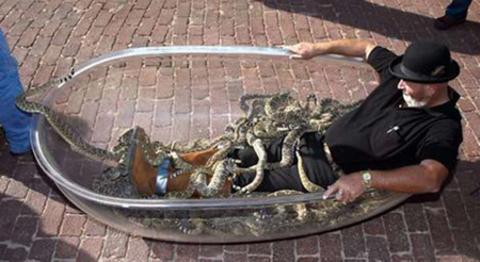 Dünyadaki en uçuk rekorların neler olduğunu biliyor muydunuz? İşte dünyadaki en uçuk rekorlar...  Amerika Los Angles'ta Jackie Biby, 24 Eylül 1999 tarihinde 75 çıngıraklı yılanla aynı küveti paylaştı.
