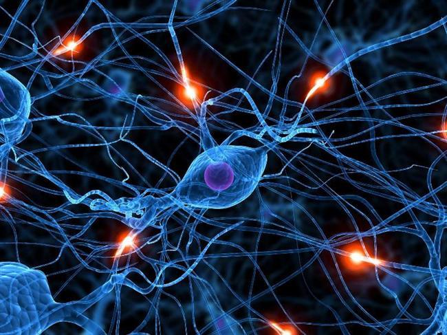 İnsan beyni evrenin en bilinmeyen, en karmaşık ve en mucizevi ögesidir. Bu yapıyı araştıran nöropsikoloji, psikoloji ve biyoloji olmak üzere üç bilim vardır. Bazen insan beyni hakkında ilginç şeyler öğreniriz.   İşte beynimiz hakkındaki 10 ilginç bilgi!
