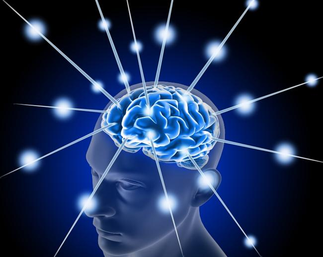 1. Kısa dönem hafızamız yalnızca yedi ögeyi tutabilir...İnsanlarda üç farklı hafıza vardır: Uzun dönem hafıza, kısa dönem hafıza ve duygusal hafıza.