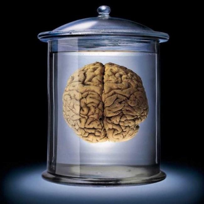 Buna karşın tüm gün çalışan bir insandan alınan kanda yüksek oranda yorgunluk toksini bulundu. Böylece bilim insanları beyninin yorulduğu kanısının insanın ruhsal durumundan kaynaklandığı bulundu.